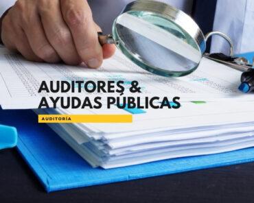 Auditoría y ayudas públicas