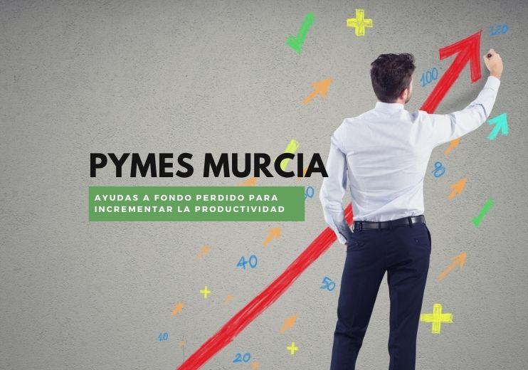 Ayudas y Subvenciones Murcia